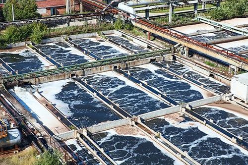 QuatKill™ Wins at Food Processing Plant
